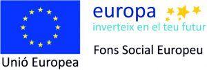 Logo_FSE_CFGM-300x101